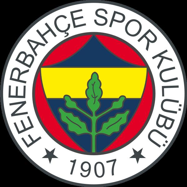 Fenerbahce Camiseta | Camiseta Fenerbahce replica 2021 2022