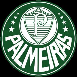 Palmeiras Camiseta | Camiseta Palmeiras replica 2021 2022